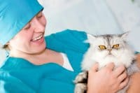 Cutting pet insurance could be false economy