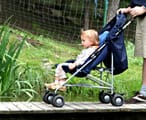 A baby in a pushchair