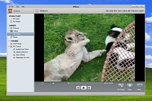 DoubleTwist PC screenshot