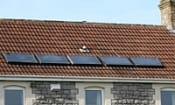 Solar companies suspended