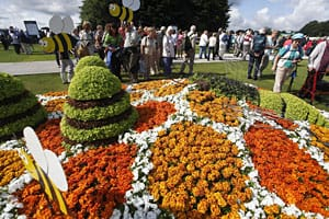 National Flowerbed Competition