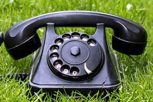 Garden phone