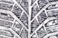 Winter tread works better in snow and ice