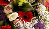 10 things you should know about  funerals