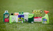 The best lawn care treatments