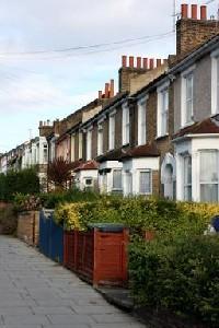 Houses in street