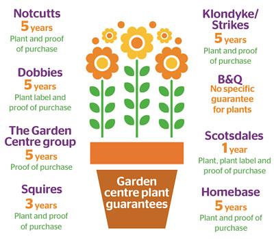 Gardening-infographic