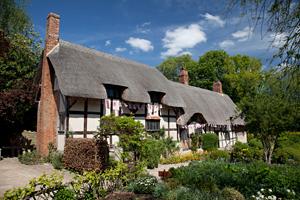 Cottage-survey 2