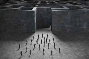 Consumer maze