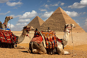 Pyramids Cairo