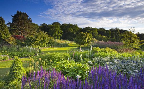 RHS Garden Harlow Carr, North Yorkshire