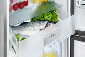 Fresh food in fridge freezer