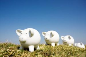Piggy banks in a row on a grassy hill