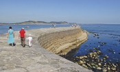 Best Dorset destinations revealed