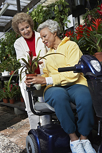 Mobility scooter in garden centre