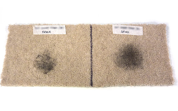 Don't Buy 1001 Carpet Fresh after on fresh and dried in mud