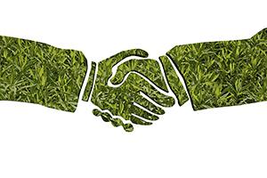 Green-handshake