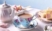 Own-brand teas top Which? taste test