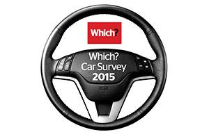 2015 Car Survey logo