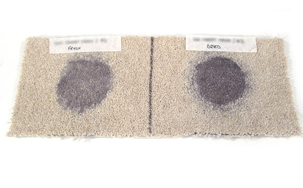 Don't Buy 1001 Carpet Fresh after on fresh and dried in red wine