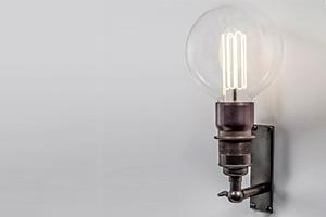 globe-bulb
