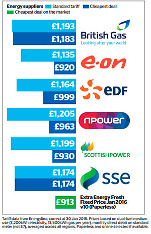 Energy suppliers infographic