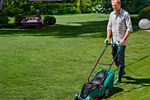 top 5 popular lawn mowers on which news. Black Bedroom Furniture Sets. Home Design Ideas