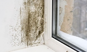 Don't pay thousands for damp-proofing treatments you don't need