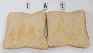 Two slices of very pale toast, produced by a Don't Buy toaster