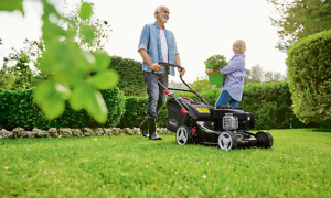 best and worst lawn mower brands which. Black Bedroom Furniture Sets. Home Design Ideas