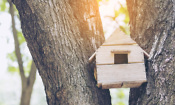 Home ownership dream for under 30s gets a boost from Help to Buy