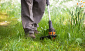 Which? reveals the best new cordless grass trimmers
