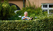 Are Stihl's £99 garden power tools a bargain?