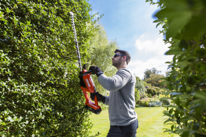 Is Echo's cordless hedge trimmer as good as a petrol model?