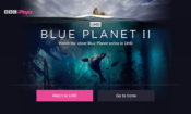 BBC iPlayer to show Blue Planet II in stunning 4K and HDR