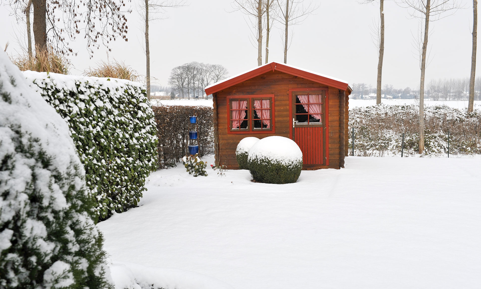 Take these essential steps to protect your gardening machinery from breaking this winter – Which? News