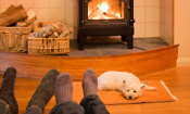 Wood burning stove with dog relaxed in front of it