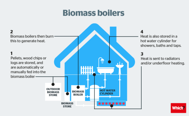 Biomass heating system