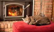 Top 5 ways to save with a wood burning stove