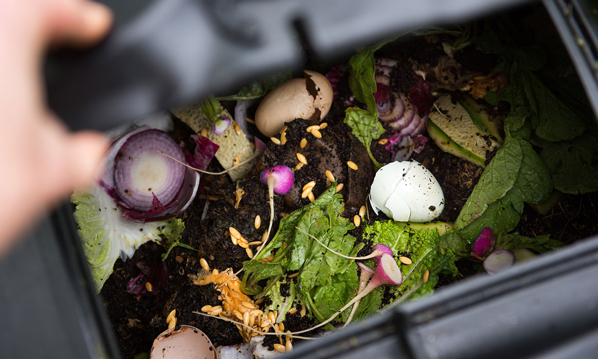 New Eden Project Coffee Capsules Are 100 Recyclable Which