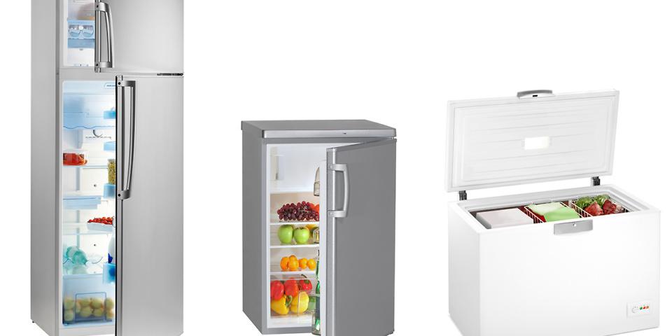 fridge, chest freezer and fridge freezer full of full