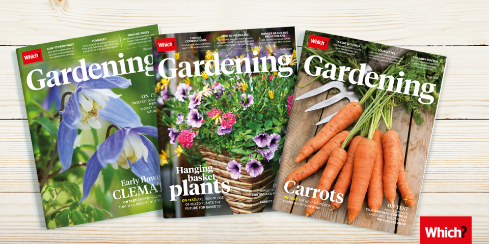 A New Friendly Place Online To Chat To The Which? Gardening Experts About  Your Garden And Plants