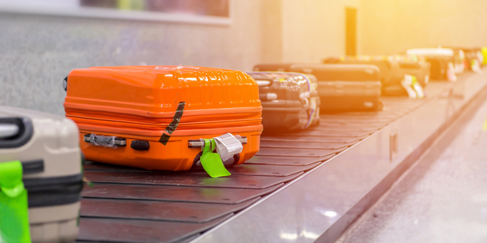 Which? test finds five Best Buy cabin bags and two Best Buy suitcases