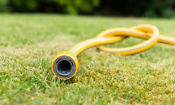 UK heatwave: 5 top tips for saving water