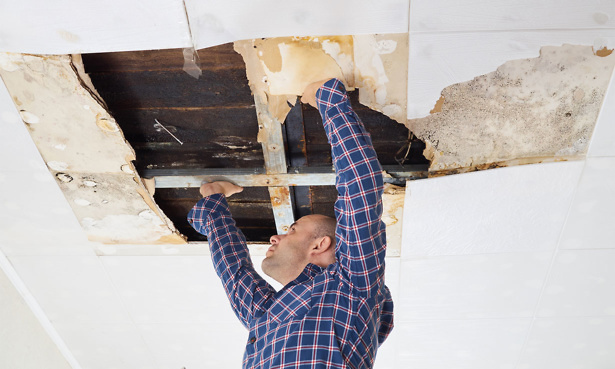 Man fixing ceiling having falled down