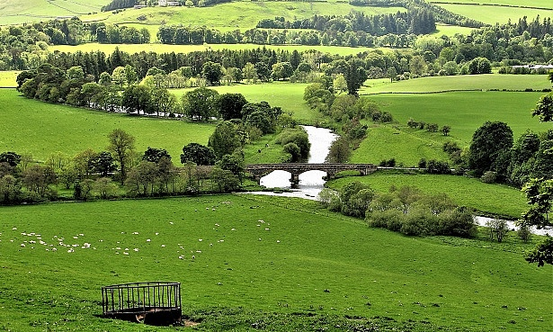 View of the River Tweed near Peebles