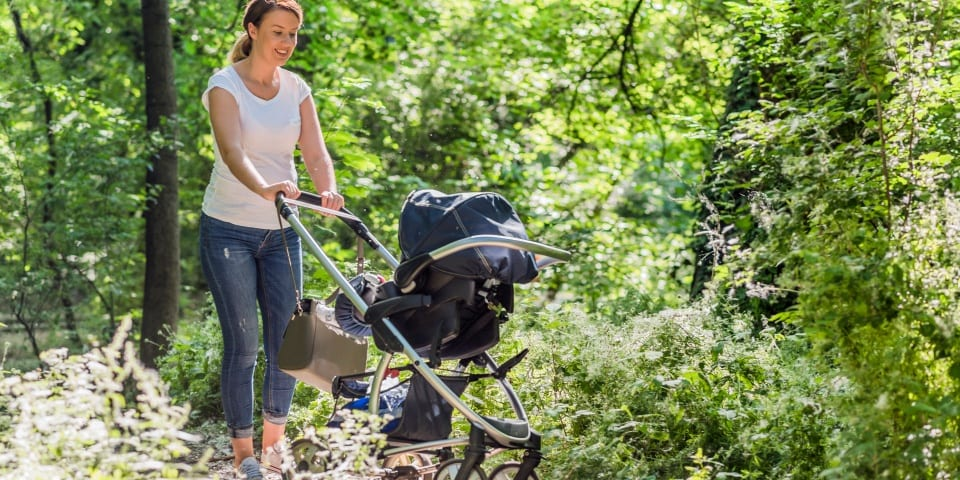 Top five popular pushchairs for spring 2019