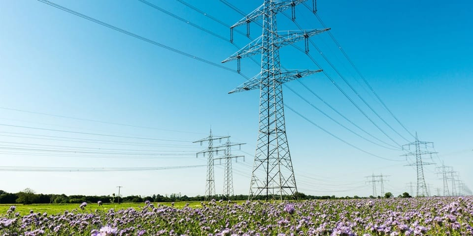 Cheapest energy deals for March 2020: is now the time to fix your tariff?