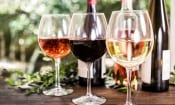 The best wines for summer drinking