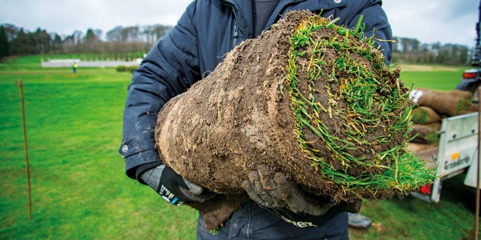 Get your lawn green again – how to buy the best turf